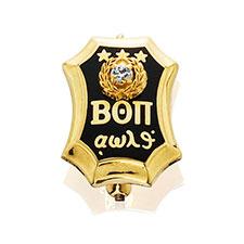 Official Plain Badge with Diamond, 10KYG