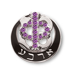 Polished Badge with Amethyst Phi