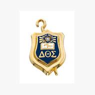 Regulation Badge