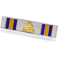 Military Service Recognition Pin