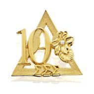 10 Year Pin