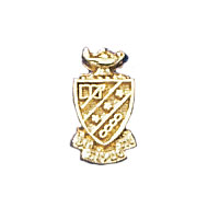 Coat of Arms Crest Button