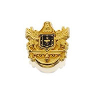 Enameled Crest Recognition Button