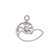 Pierced Nautilus Pin/Charm
