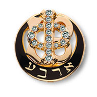Polished Badge with Cubic Zirconia Phi