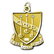 Volunteer Service Crest- 20-29 years of service-2 jewels