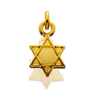 #39 Star of David Dangle